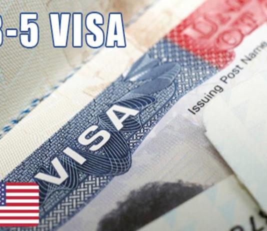 Investment linked visa